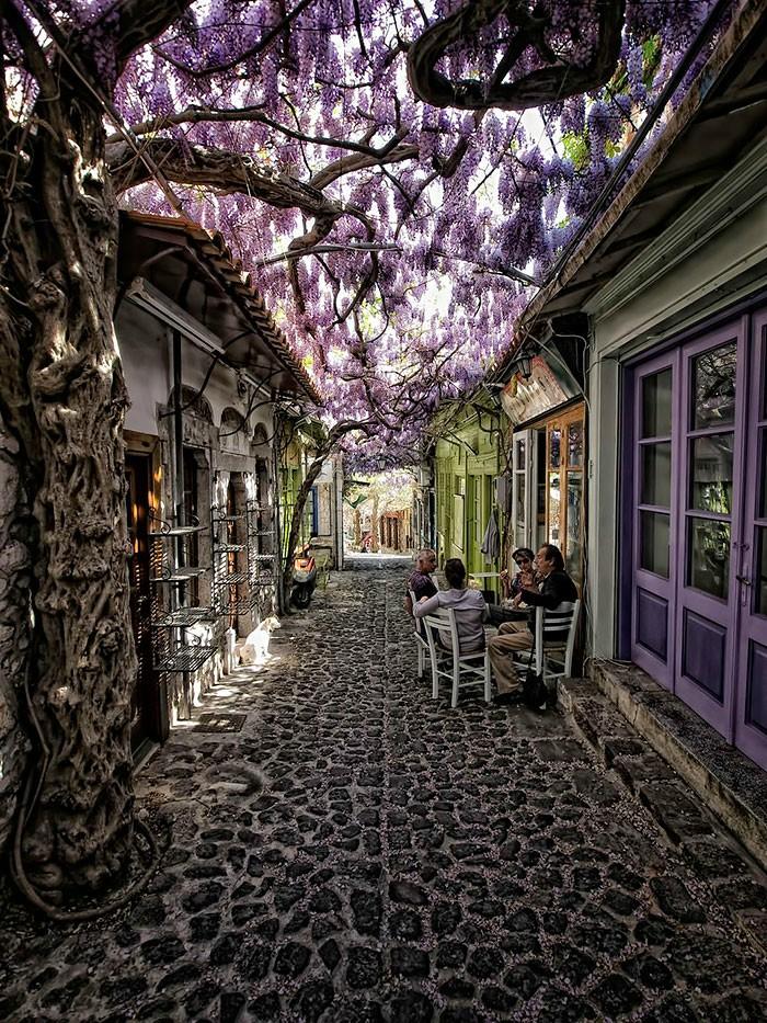 Греция, Моливос