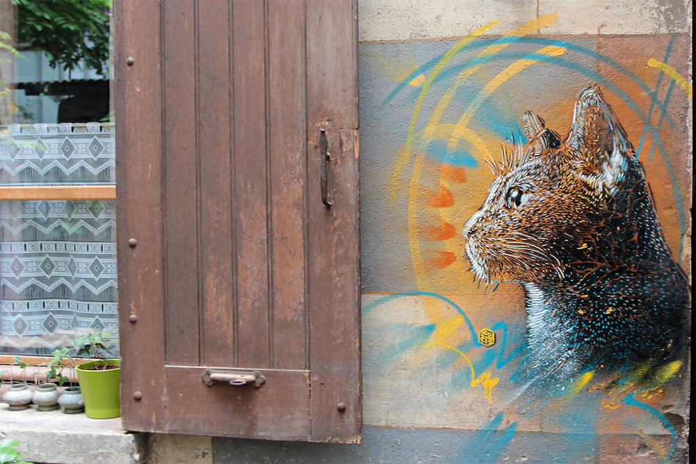 граффити кот
