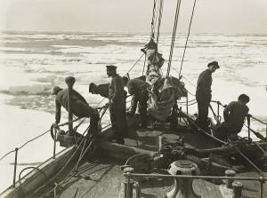 В море Уэдделла