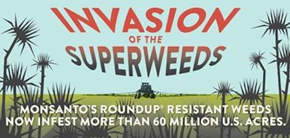 super-weeds