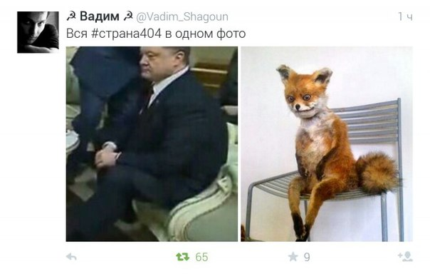 bZOFqNGovoQ