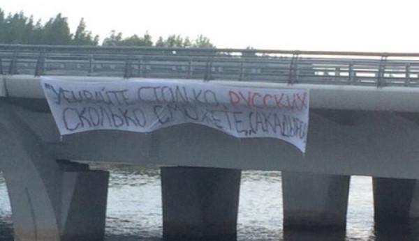 Мост Кадырова СПБ.JPG