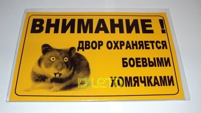 Объявление про хомяков