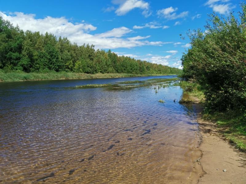 Новоладожский канал вверх по течению
