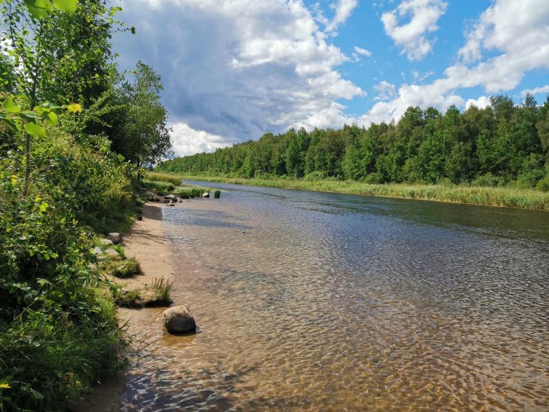 Новоладожский канал вниз по течению