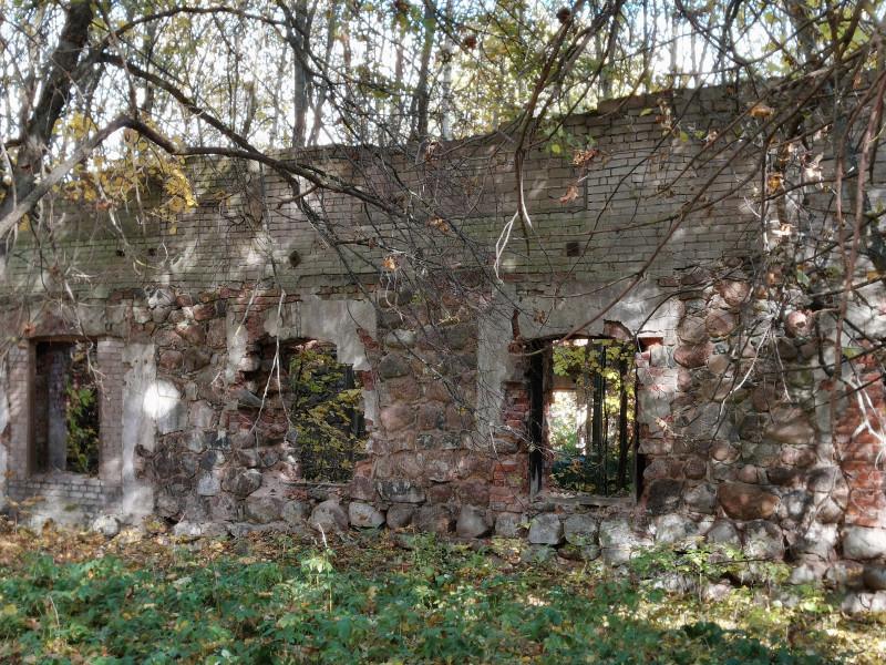 Руины оранжереи