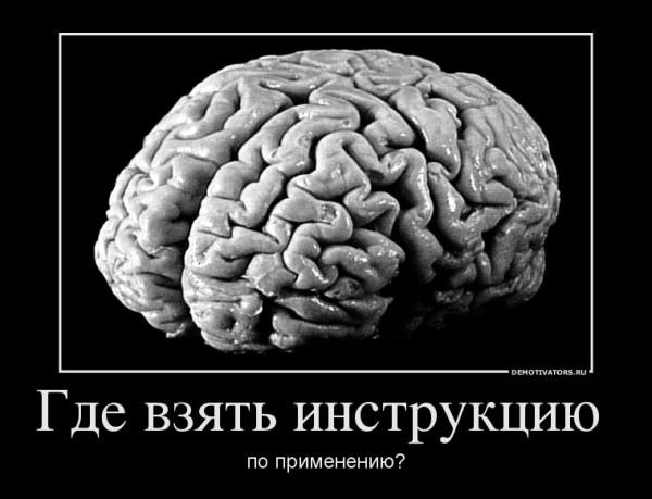 юных почему говорят куриные мозги может быть