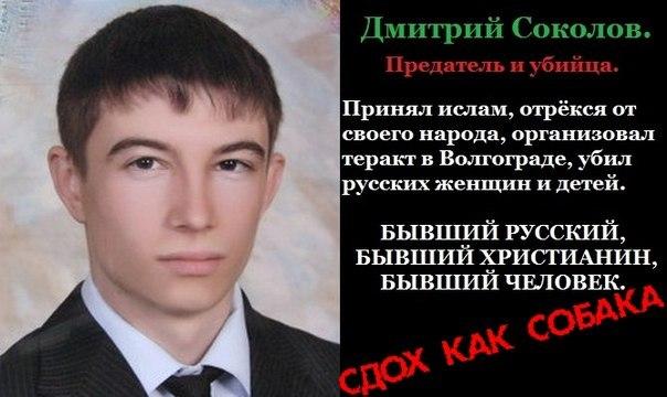 Дмитрий Соколов: собаке  - собачья смерть