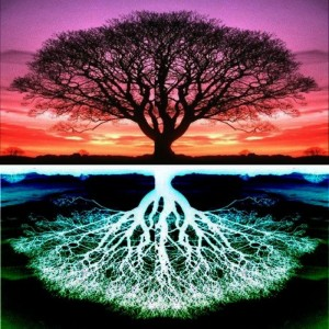 tree-of-life-and-flip