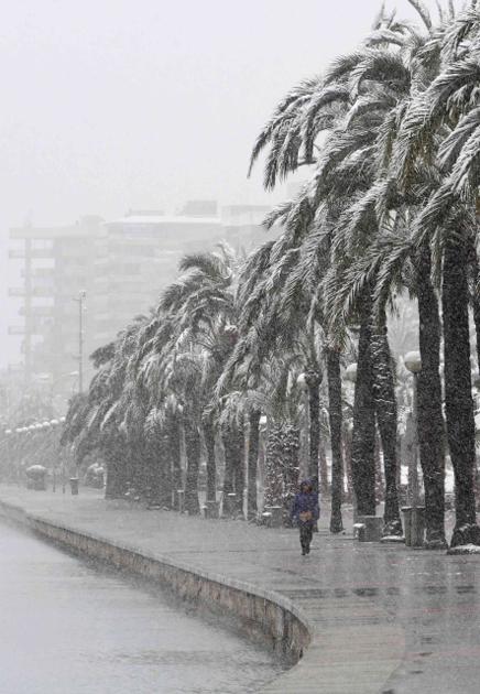 Улица Пальма-де-Мальорки, 4 февраля 2012 года