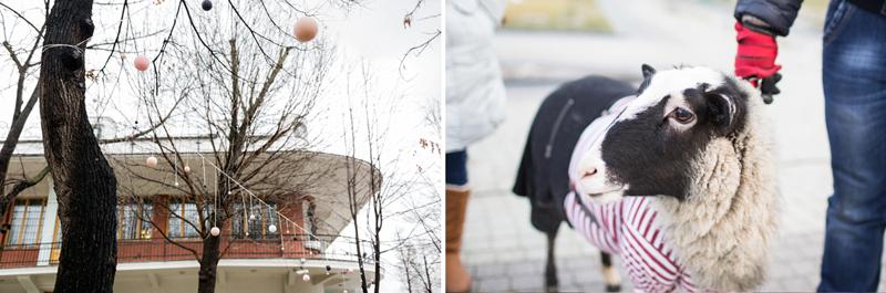 Seasons_Xmas_Butenko_Ekaterina_Photography_фотограф_Бутенко_Екатерина_13