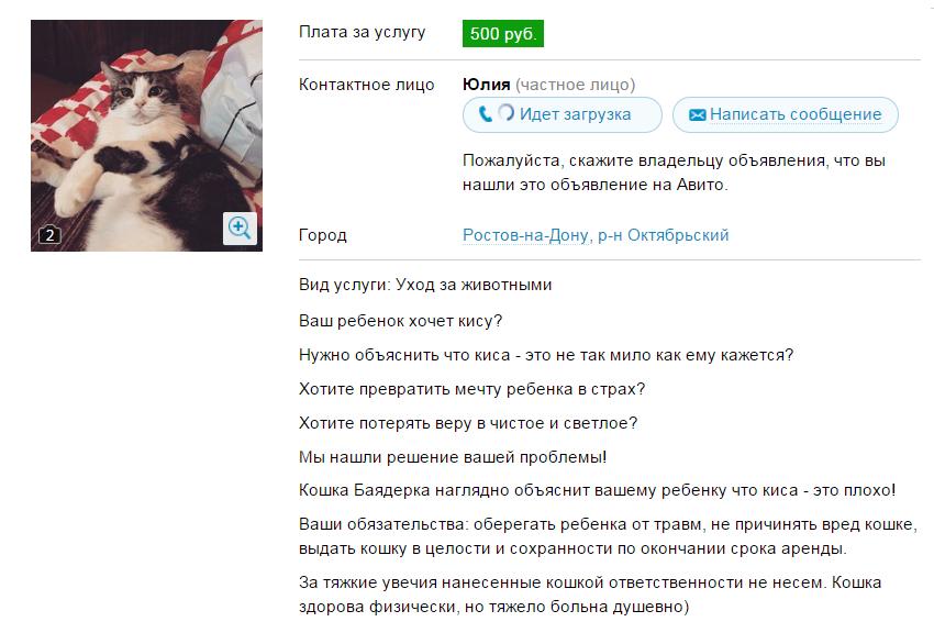 2015-03-13 09-48-24 Услуги - Злая кошка в аренду посуточно в Ростовской области предложение и поиск услуг на Avito - Google