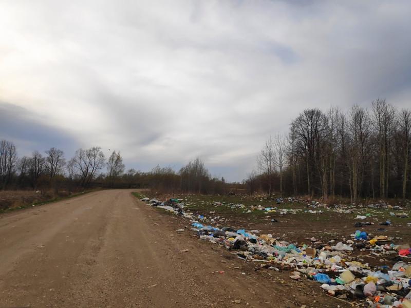 Куда делись деньги, которые мы отдали на мусорную реформу?