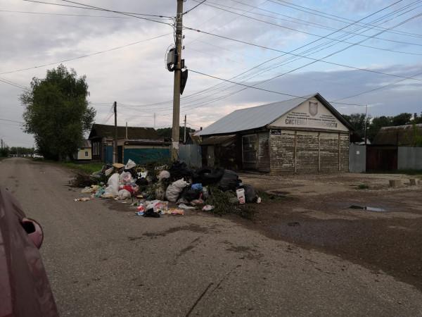 Для чего мы затеяли мусорную реформу? Зачем с нас собрали миллиард?
