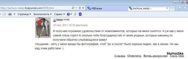 kachura_nataly - - Windows Internet Explorer 24072012 012612