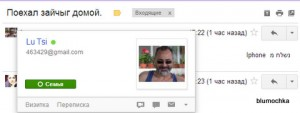 Поехал зайчыг домой. - blumochka@gmail.com - Gmail - Google Chrome 14012013 184915-001