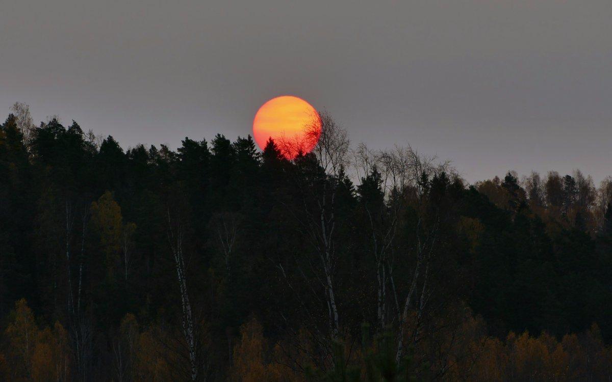 Очередной сбой матричных куполов: солнце пора ремонтировать, или заменить по гарантии 16016_original