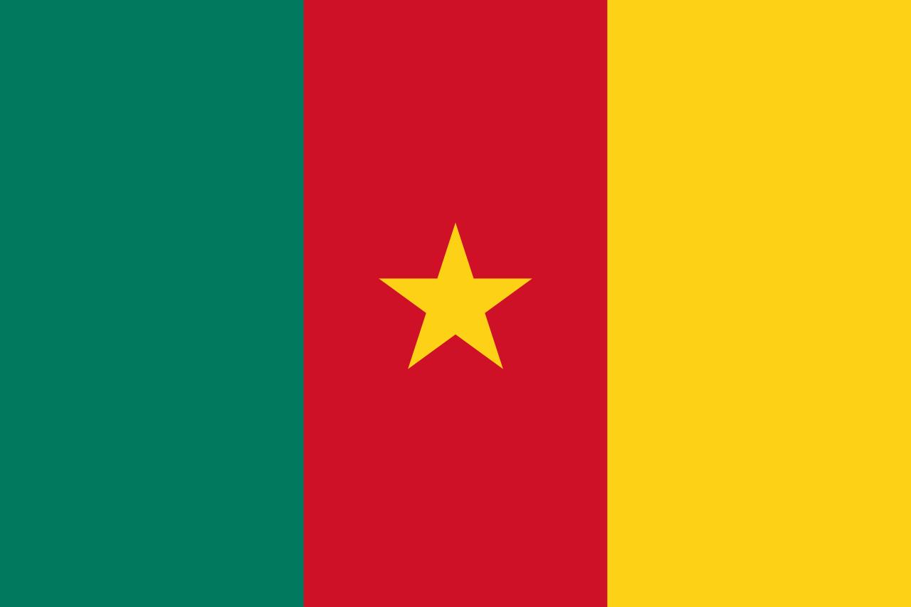 Программа Служителя Двух Святынь по разговению постящихся в Камеруне запущена
