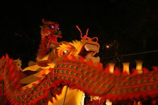 chinese new years dragons