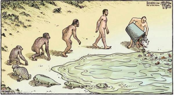 картинка_эволюция_007