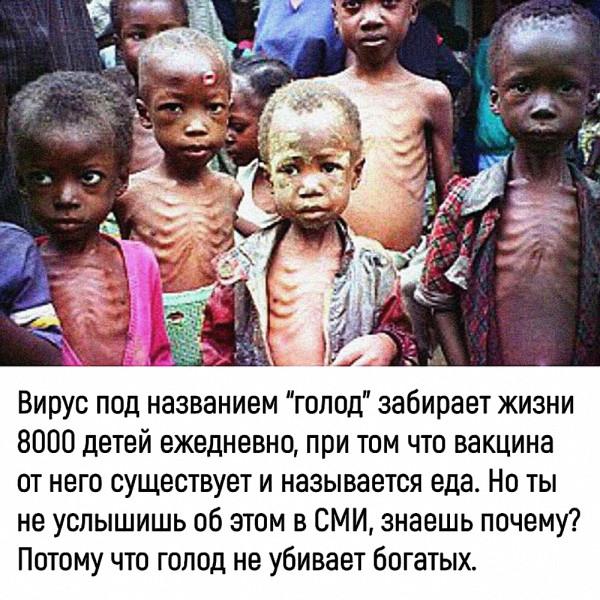 голод_не_убивает_богатых