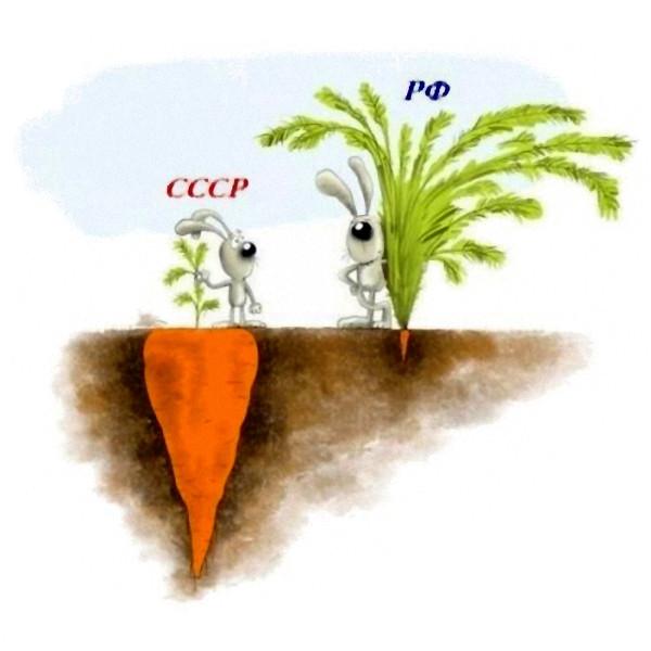 морковка_СССР_РФ