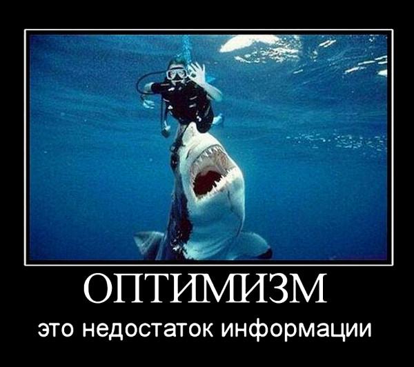 оптимизм_это_недостаток_информации