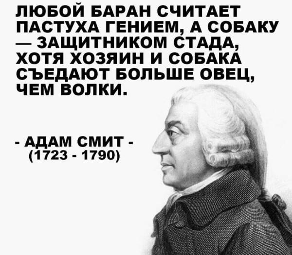 цитата_смит_любой_баран_пастух_волки