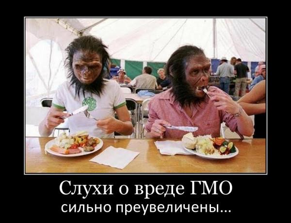 демка_слухи_о_вреде_гмо
