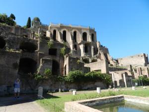 Roma 2014 575