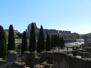 Roma 2014 581