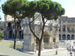 Roma 2014 590