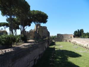 Roma 2014 597