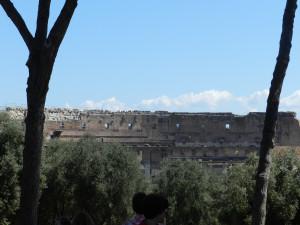 Roma 2014 610