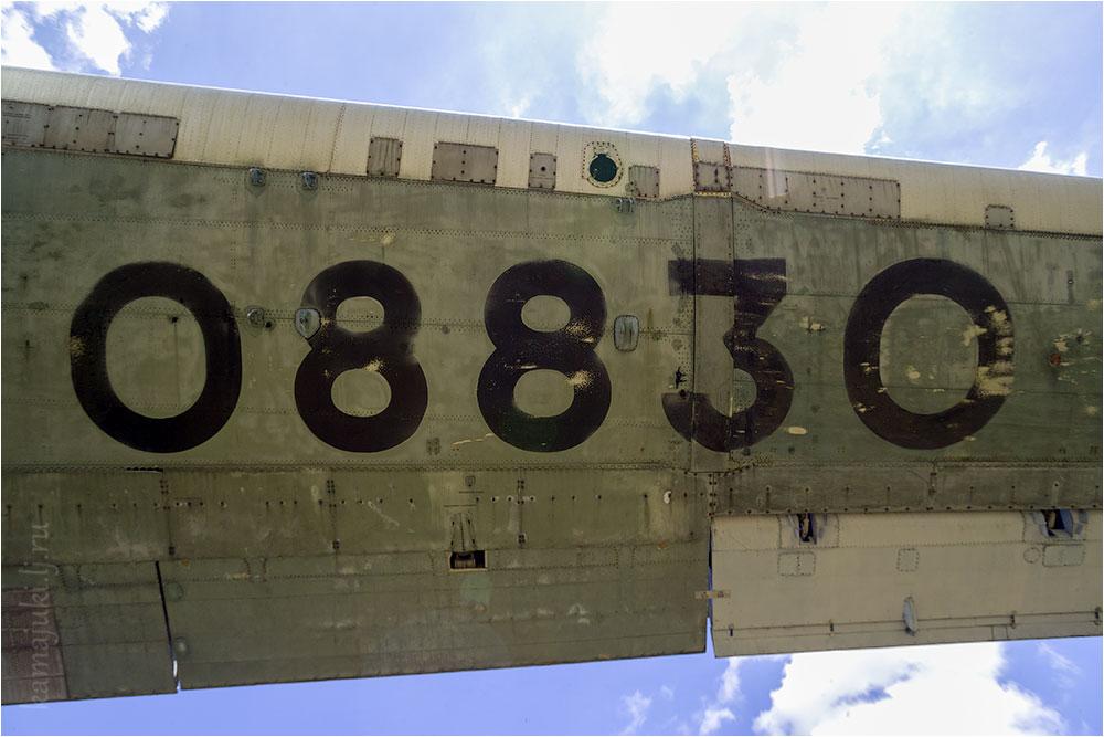 084.jpg