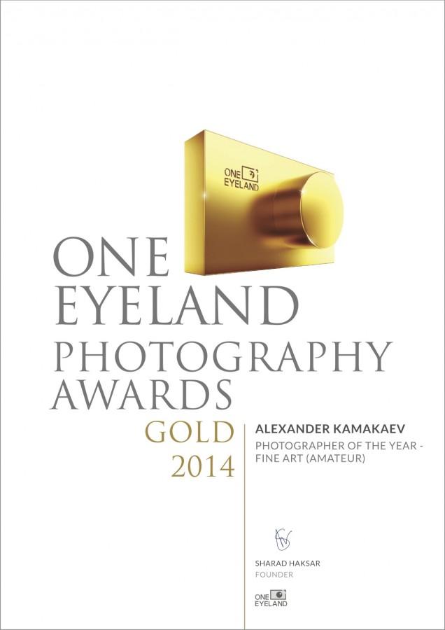 ALEXANDER KAMAKAEV_GOLD_ AMATEUR