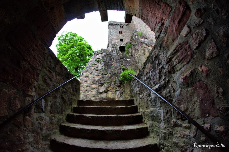 старинные замки фото изнутри