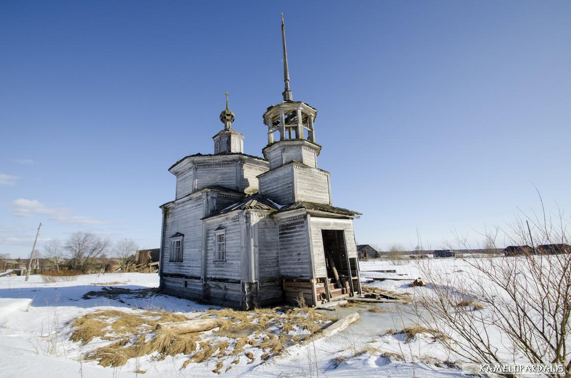 бурый фото деревня нименьга архангельская обл онежский р это предмет вожделения