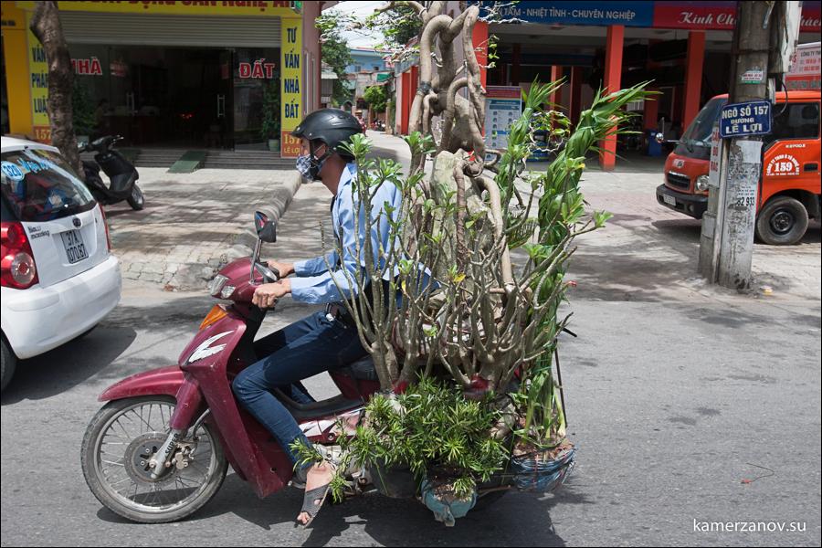 7 Vietnam-01