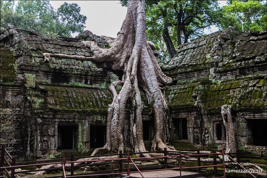 8 Cambodia-39