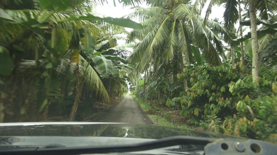 way to Piai
