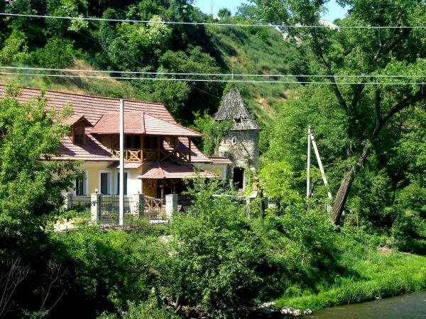 поллев2009