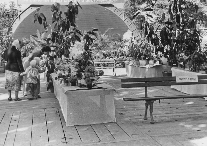 Виставка рослин ботсаду.jpg