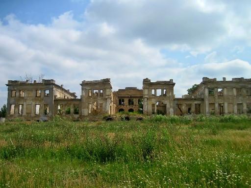 Васильевка, замок