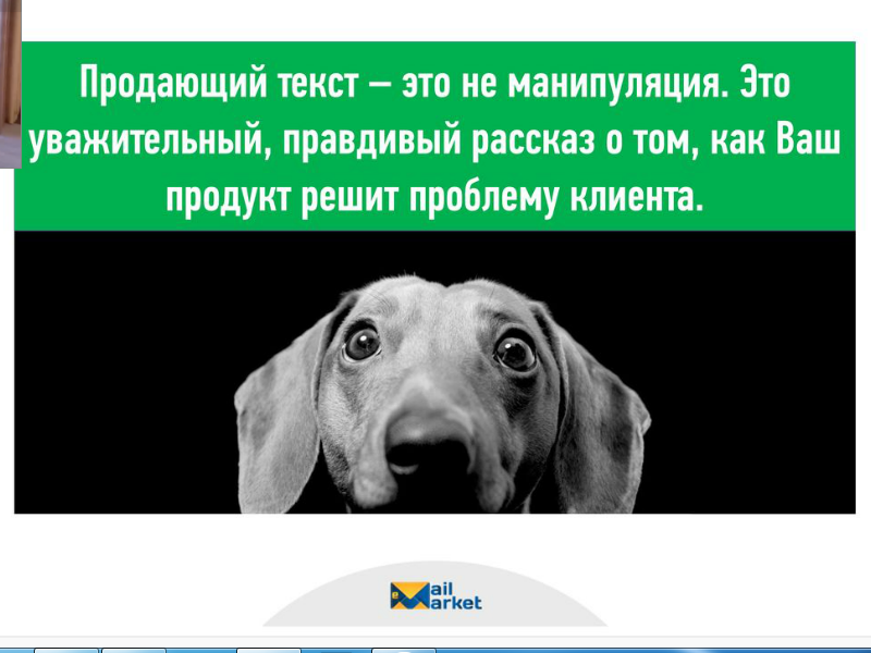 Продающий текст собачка