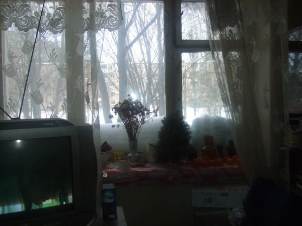 Окно с ёлкой 1