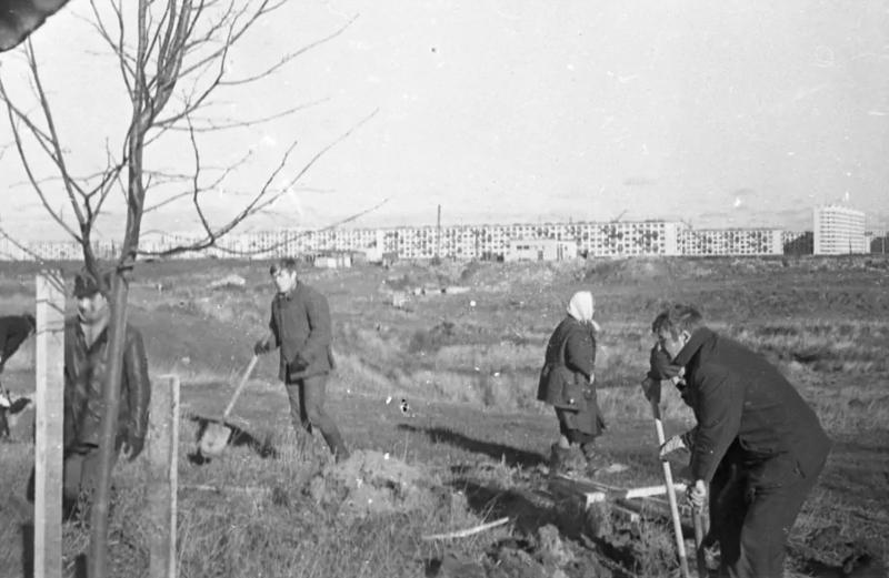 Муринский парк в конце семидесятых годов
