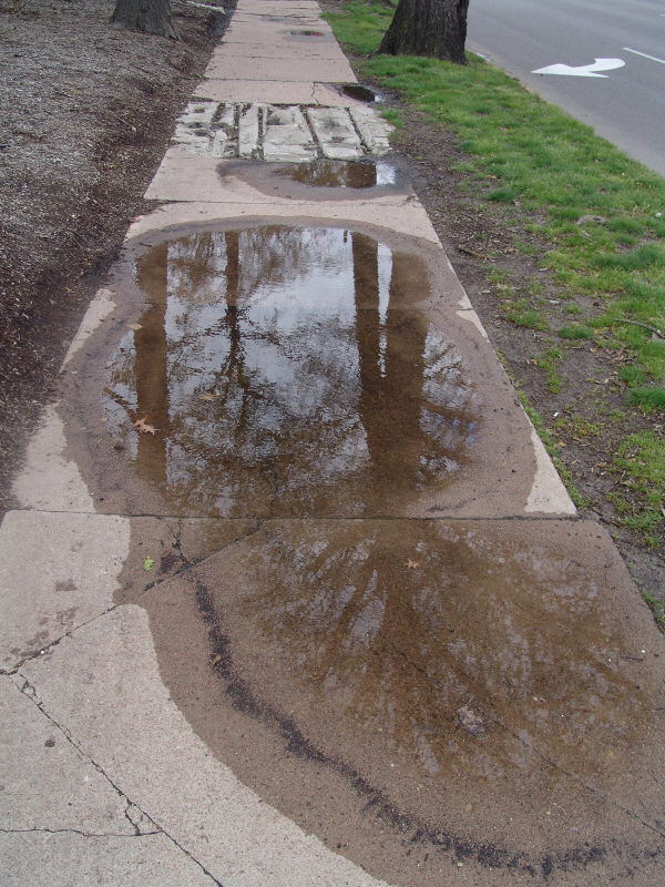 Puddles on a cracked sidewalk