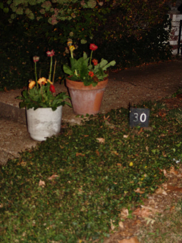 Potted flowers on the front step, next to a sign reading 30