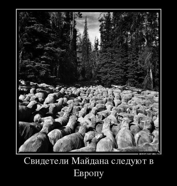 509063_svideteli-majdana-sleduyut-v-evropu_demotivators_to